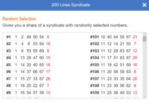 Lottery Syndicate Lines