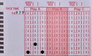 Step 2 - Select one number from each column to select race time